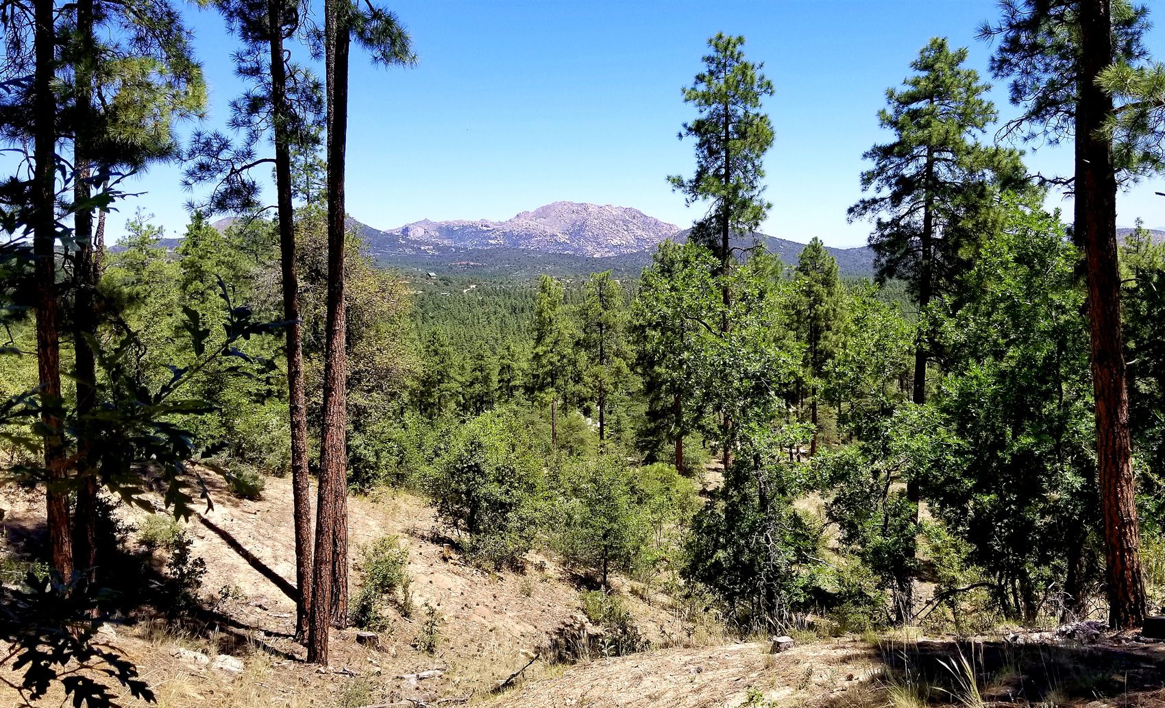 Beautiful Prescott hiking trail in Yavapai County